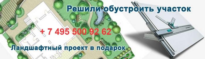 4535473_ (700x201, 113Kb)