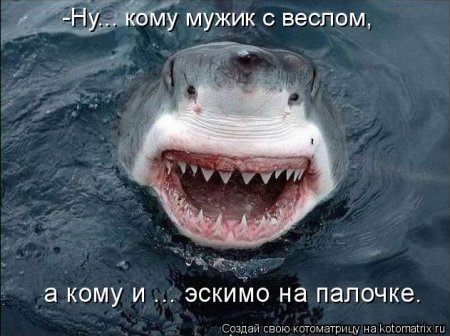 1416371973_kotomatritsa_3q (450x336, 99Kb)