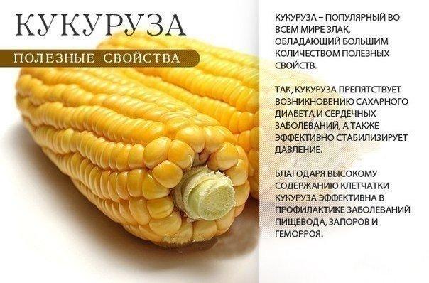 EDyExeyafNM (604x398, 59Kb)