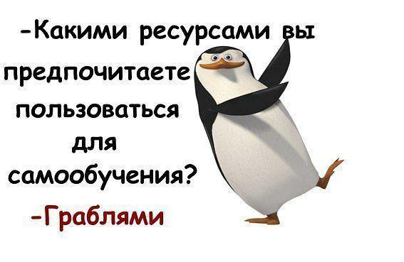 xlCyYfUmuHo (567x369, 91Kb)