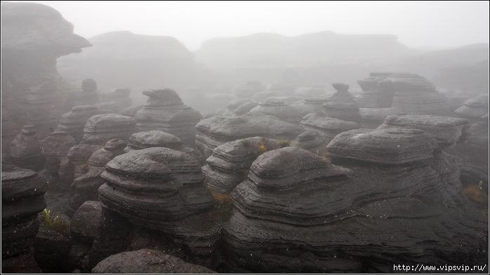 гора Рорайма, Венесуэла12 (700x392, 166Kb)