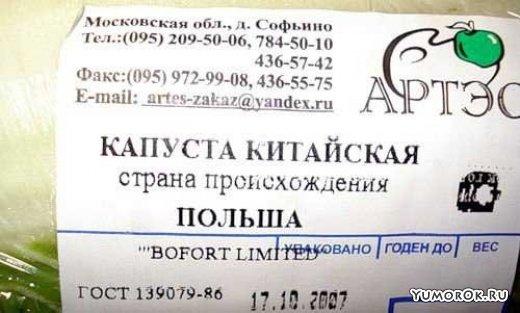 1225862714_veselye-tsenniki_12366_s__39 (520x313, 115Kb)