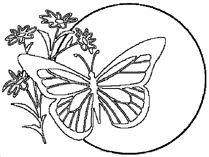 Butterflies_and_insects_coloring_pages_43 (700x526, 10Kb)