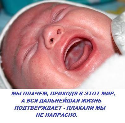 3416556_getImage_6_ (403x396, 28Kb)