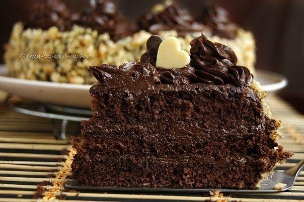 Шоколадный торт (604x402, 70Kb)