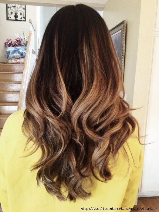 Back-View-of-Long-Ombre-Hair (524x700, 258Kb)
