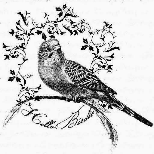 Birdie (512x512, 162Kb)