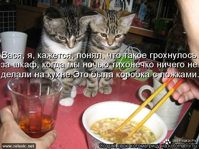 kotomatrix_0932 (640x480, 282Kb)
