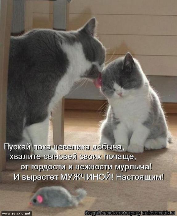 kotomatrix_1042 (574x700, 288Kb)