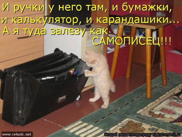 kotomatrix_1082 (640x480, 282Kb)