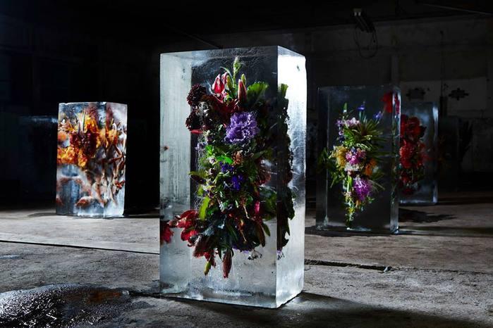 iced-flowers-makoto-azuma-11 (700x466, 53Kb)