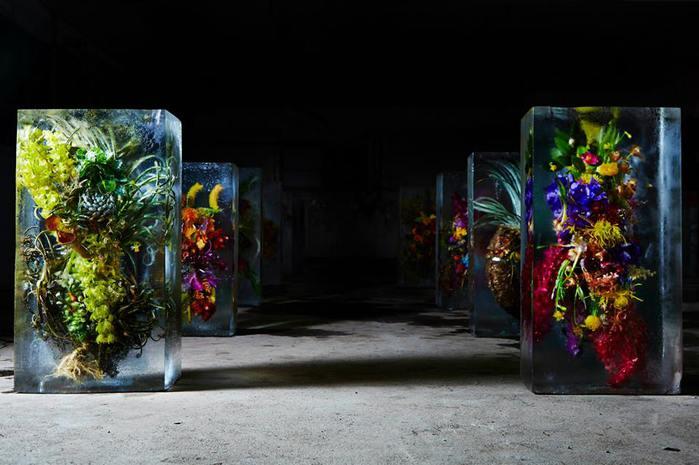iced-flowers-makoto-azuma-41 (700x465, 49Kb)