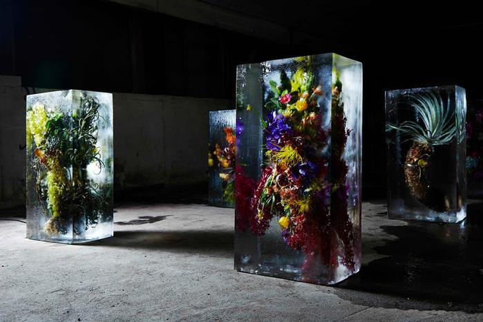 iced-flowers-makoto-azuma-61 (700x466, 52Kb)