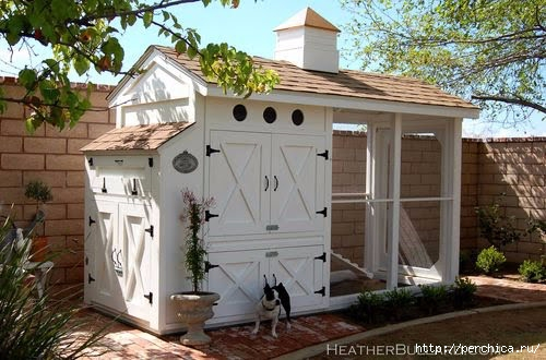 country house chicken coop (500x330, 134Kb)