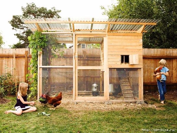Дом для курицы своими руками