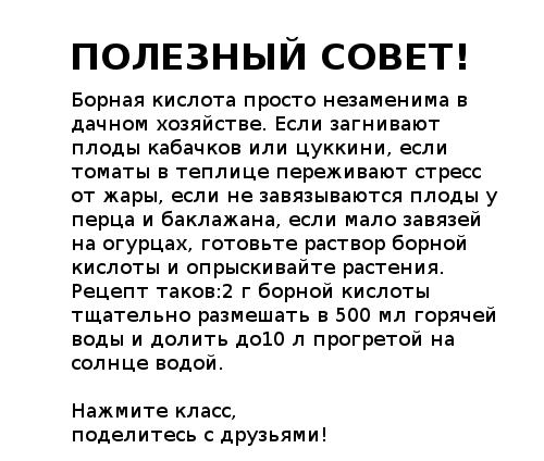 5490558_ (500x424, 16Kb)