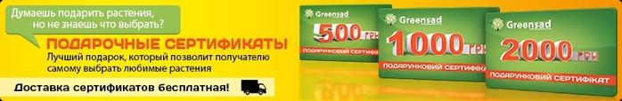 4208855_sertifikati (700x114, 70Kb)