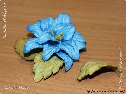 Бумагопластика. Цветы из акварельной бумаги (1) (520x390, 103Kb)