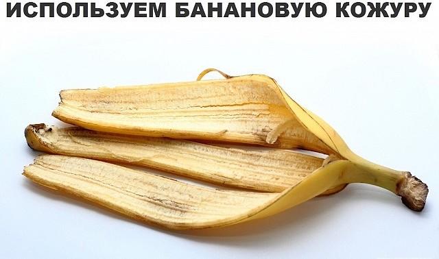 банан.кожура (640x378, 56Kb)