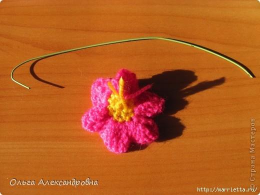 Цветок в горшочке - ПРИМУЛА крючком (2) (520x390, 110Kb)