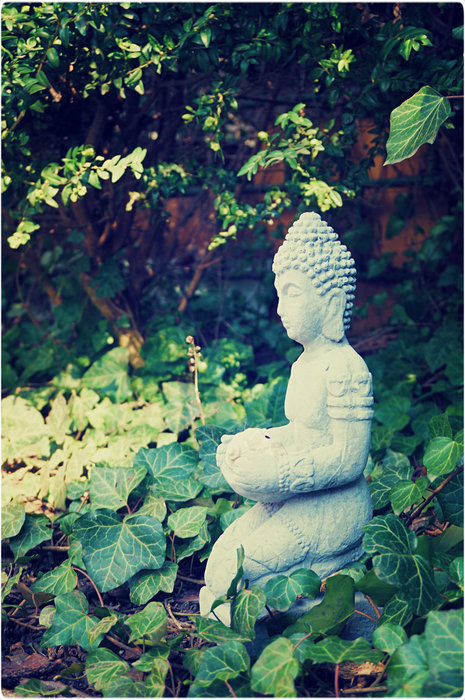 buddha garden (465x700, 137Kb)