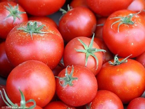 t_pomidor-0 (500x376, 37Kb)