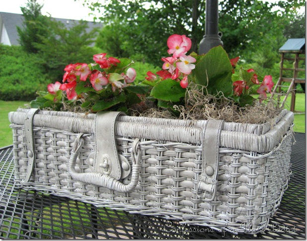 70704156_shabby__basket_planter_thumb9 (618x484, 383Kb)