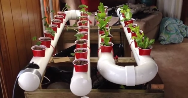 FabArtDIY-PVC-Gardening-Ideas-and-Projects-PVC-Aquaponic-Garden (627x327, 154Kb)