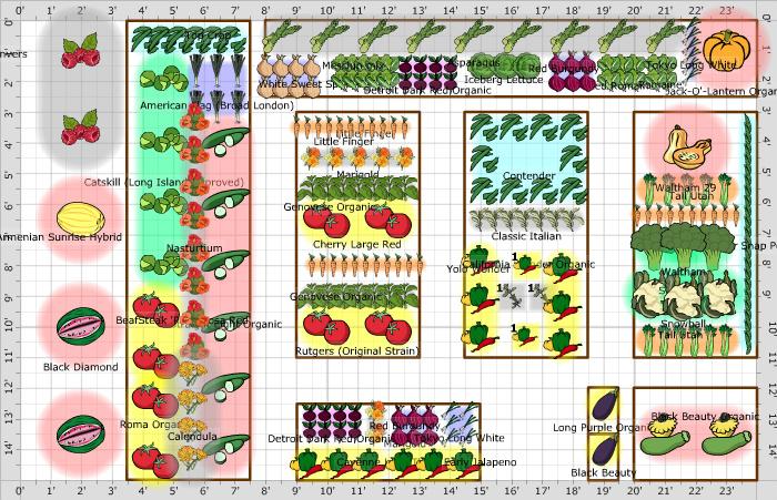 План посадок огорода.
