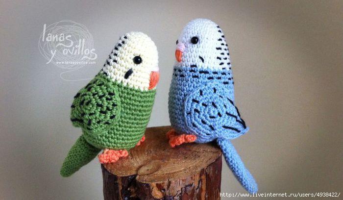 попугаи (700x408, 128Kb)