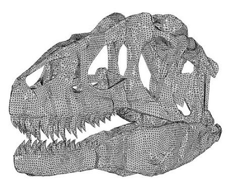 Динозавр/1415502_Dinozavr (480x354, 87Kb)