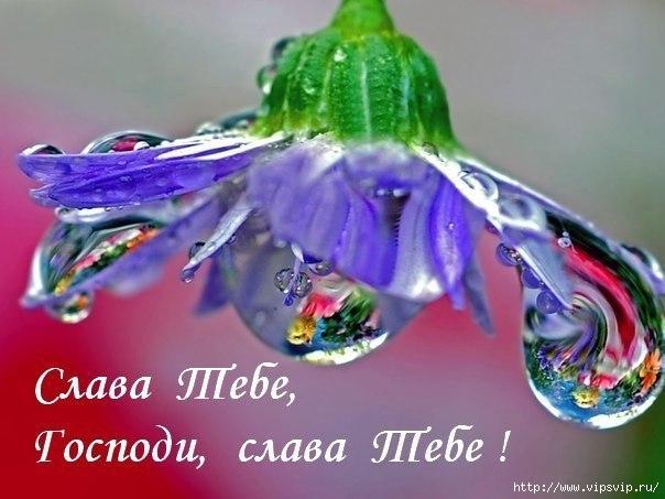 5745884_slava_tebe_Boje_mydroe (604x453, 132Kb)