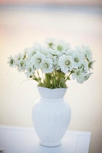 17 цветочки (400x600, 115Kb)