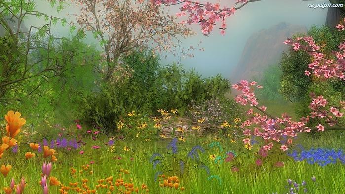 aka-kwiaty-rozne (700x393, 226Kb)
