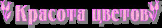 5155516_4maf_ru_pisec_2015_03_18_203128 (551x97, 103Kb)