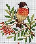 Превью ornament_snegiri-5 (336x406, 127Kb)