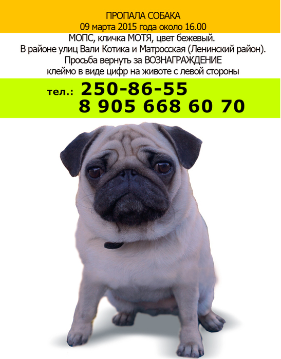 115521697-115467447-motya-a4 (547x700, 221Kb)