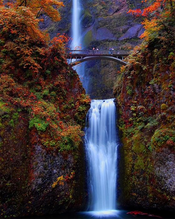 2.  Орегон, США. Малтнома-Фолс (559x700, 666Kb)