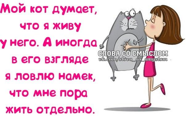 1395342261_frazochki-2 (604x376, 130Kb)