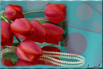 Нежные-тюльпаны (400x270, 219Kb)