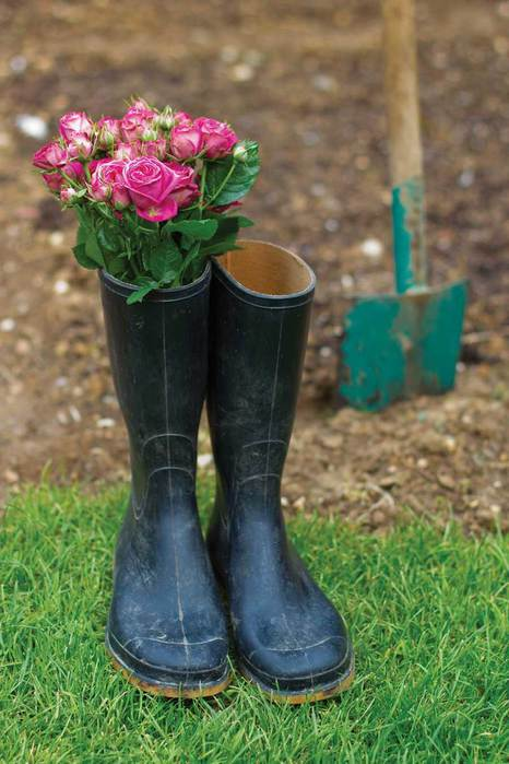 content_hbc-fm12-ww-roses-in-boots-shrstock-81765769 (466x700, 51Kb)