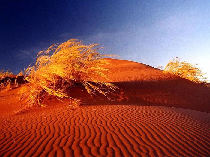 4. Дюны пустыни Намиб 1 (700x525, 580Kb)