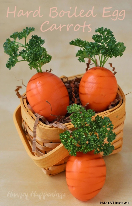 orange-colored-hard-boiled-egg-carrots  (448x700, 224Kb)