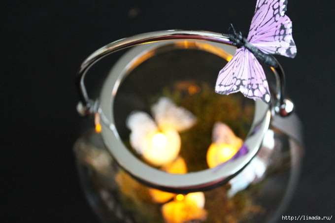 Lantern-with-butterflies-680x453 (680x453, 151Kb)