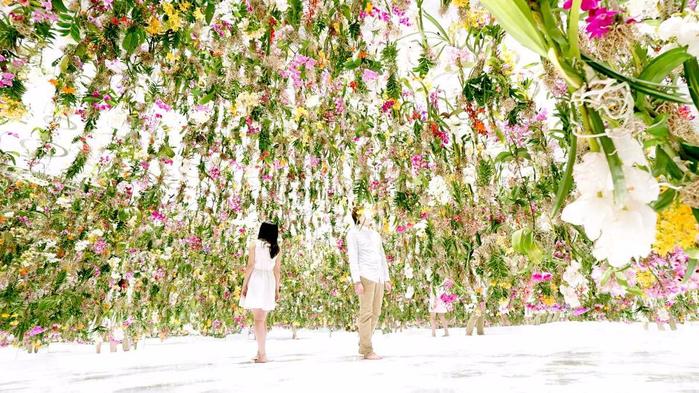цветочная инсталляция 1 (700x393, 458Kb)