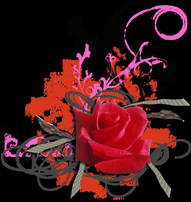 roza2 (9) (661x700, 419Kb)