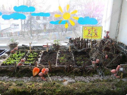 Наталья Подножкина-огород-на подоконнике-муравьишка2 (520x390, 228Kb)