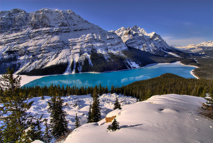 100peyto-lake-canada (700x469, 207Kb)