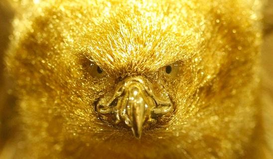 золото (548x319, 217Kb)