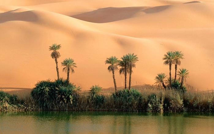 самые красивые оазисы2 (700x437, 309Kb)